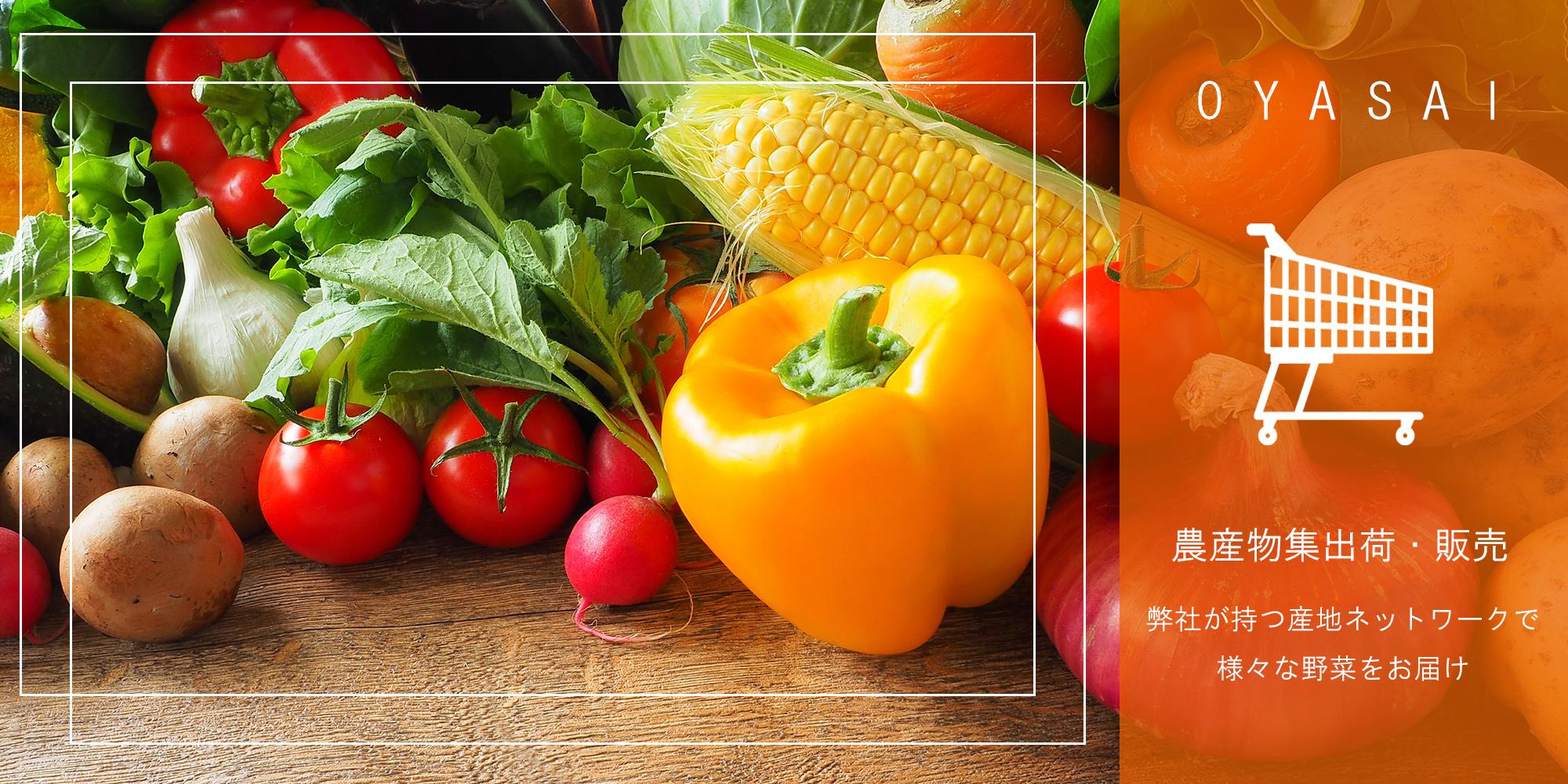 じゃがいも、ニンジン、トマト、パプリカ、トウモロコシ